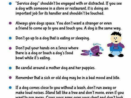 Dog Do's and Don'ts Just for Kids