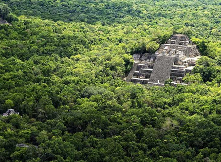 La Grandeza Maya escondida en la Selva.