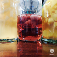 Licores • Infusões • Bitters