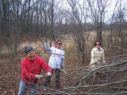 Volunteers Anna Skuza, Yuanne Lopez, & Karen Comacho stacking cut brush.