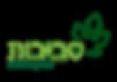 לוגו פרוייקטים.png