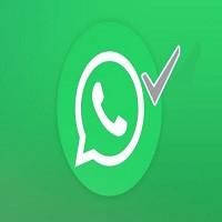 El significado del check de color gris en WhatsApp