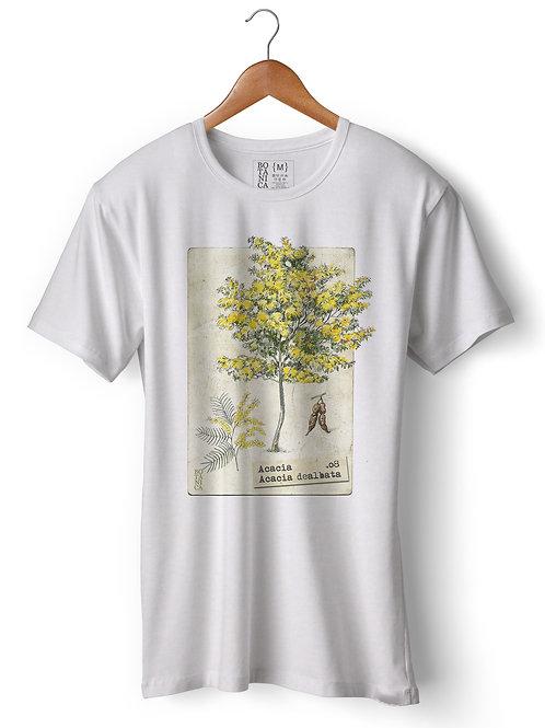 Camiseta - Acácia - Acacia dealbata