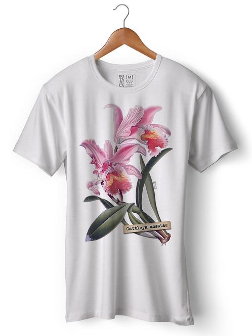 Camiseta Cattleya mossiae