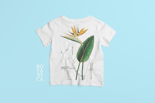 Camiseta Kids - STRELÍTZIA