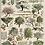 Thumbnail: Bandeira de parede - Árvores do Pomar