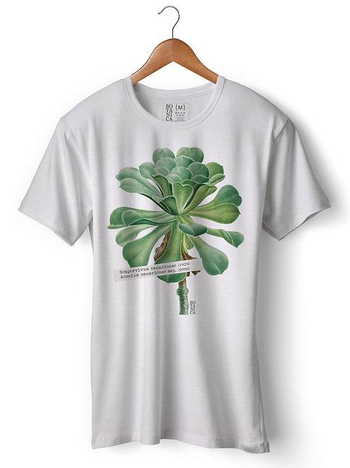 Camiseta AEONIUM CANARIENSE