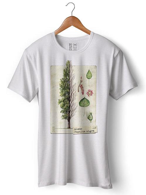 Camiseta - Alamo - Populus nigra
