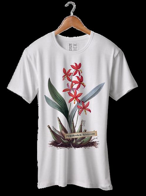 Camiseta Prosthechea Vitellina