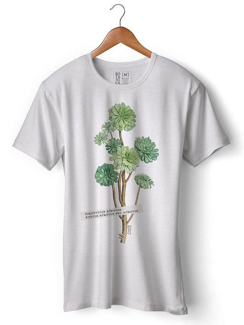 Camiseta AEONIUM ARBOREUM VAR. - CB002
