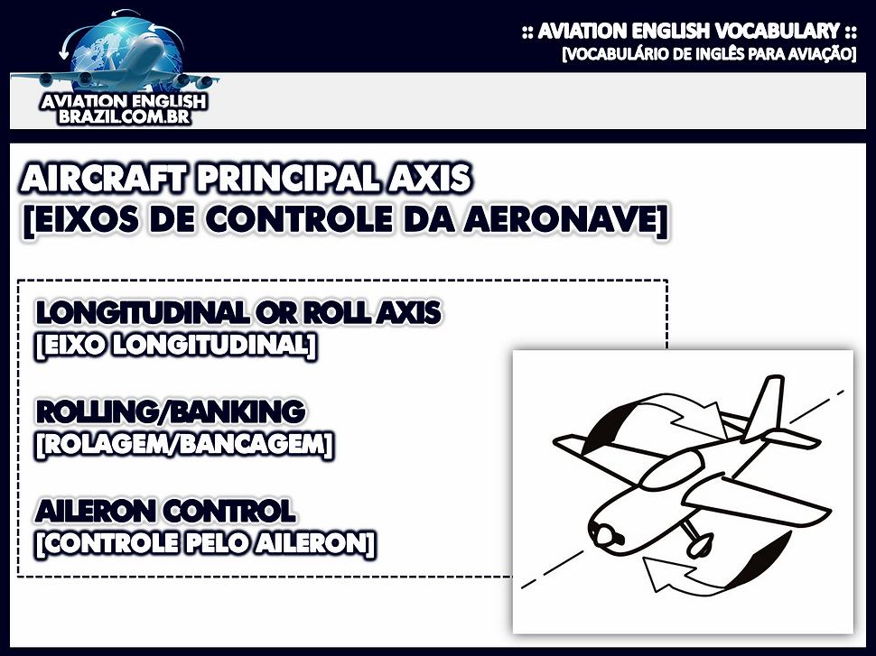 Longitudinal axis.png