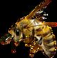 big-bee.png