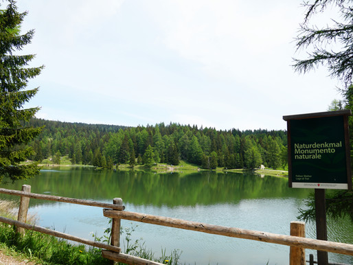 You better train before the hike to the Lake Tret!