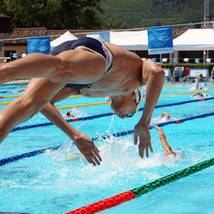 swimmers can fly