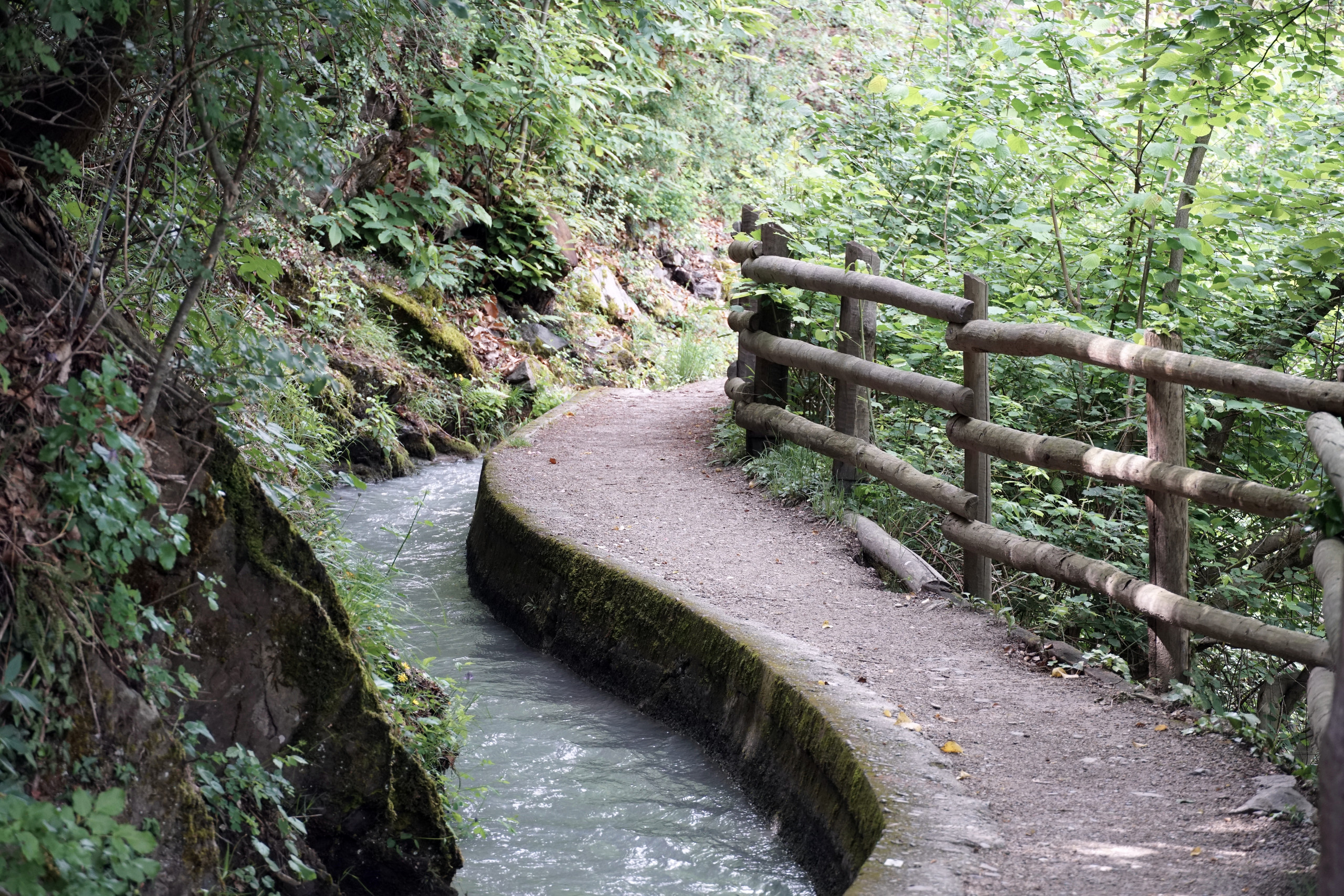 Marling pathway, nature, relax...recharging batteries by, only, breathing that fresh air