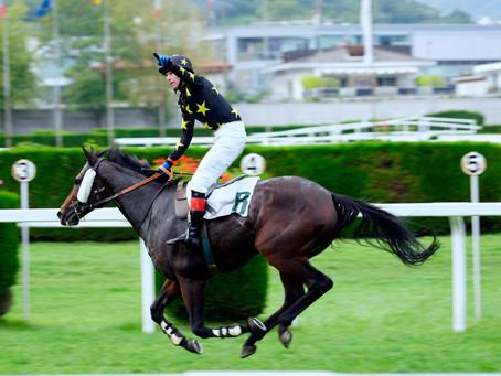 "The ""Gran Premio"" Merano horse racing event in September 2019."