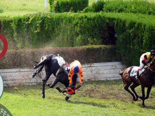 Horse race in Merano, Italy, this time a bit different :)