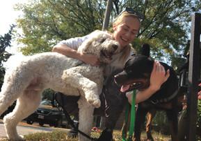Dog walkers Yorkville