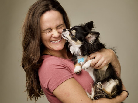 Well adjusted dogs - Chiropractic care for your dogs