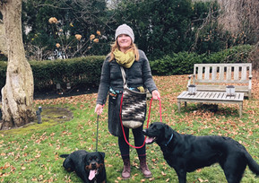 Summerhill dog walker