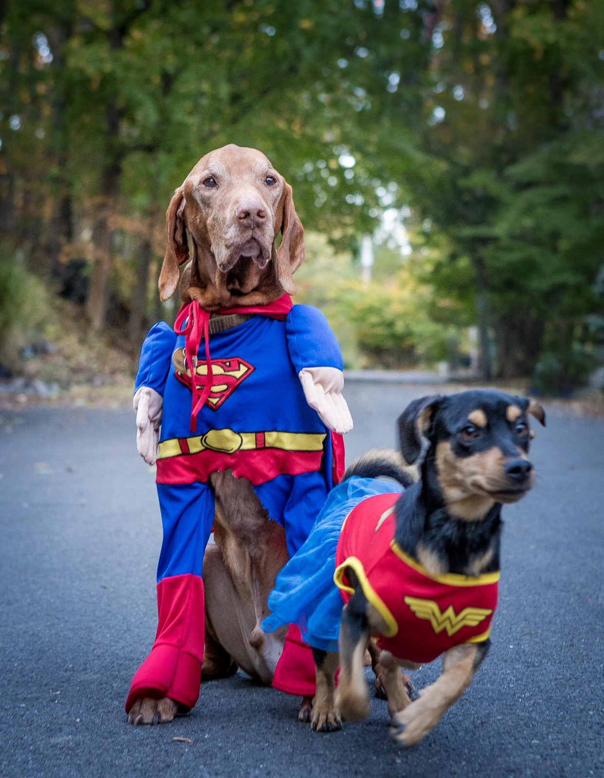 Cooper and Riley-Superheros