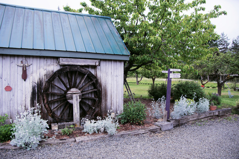 Smell the Drying Shed