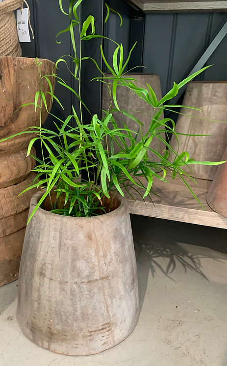Indonesian Medium Pot