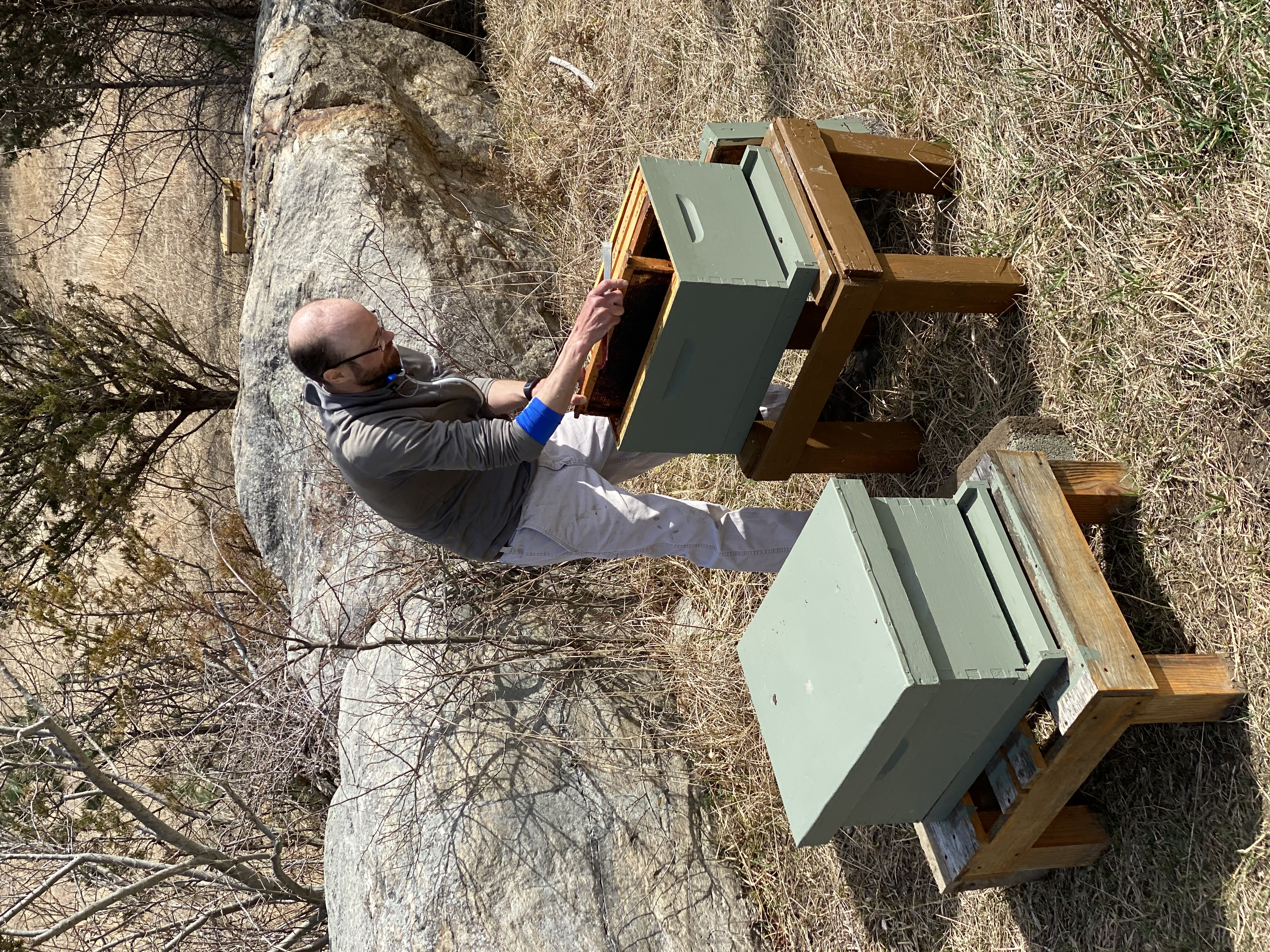 Jamie setting up new hive