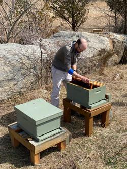 Jamie setting up new hive