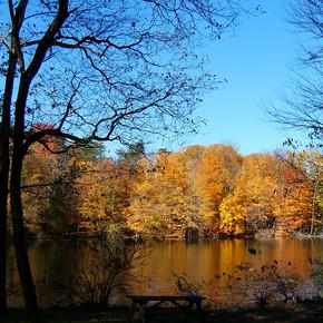 Scales Lake