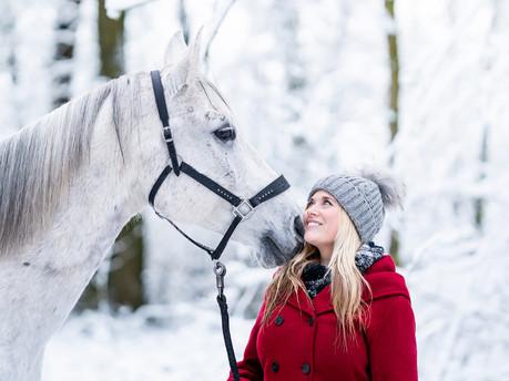 Pferdeshooting im Schnee im Gramschatzer Wald bei Würzburg