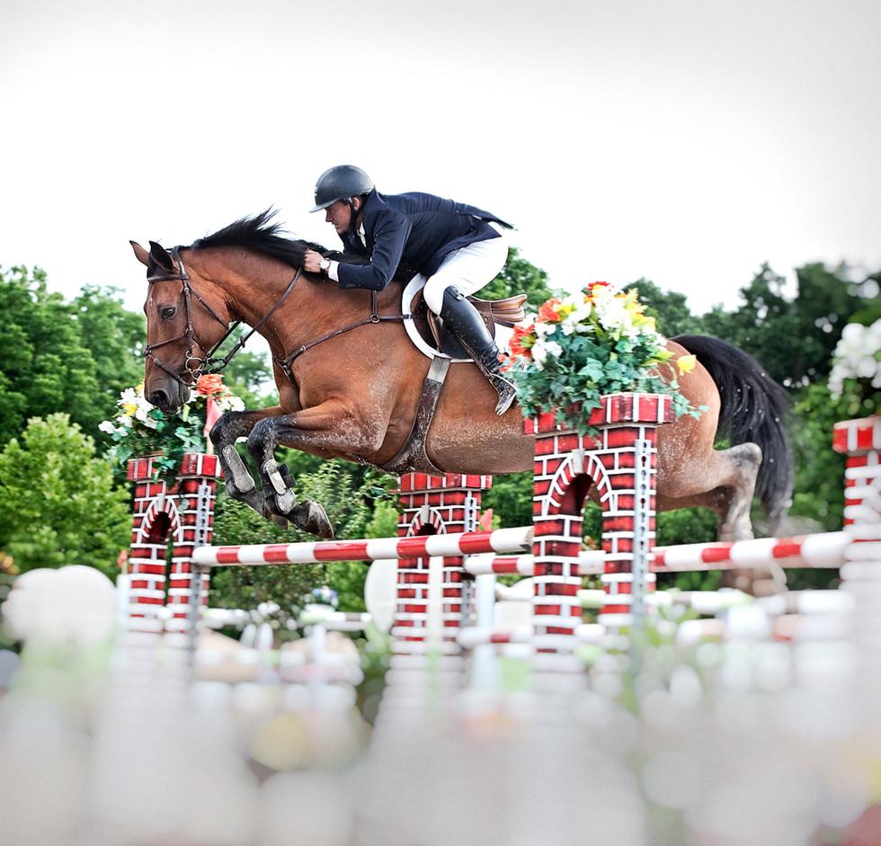 horsejumpingx72.jpg