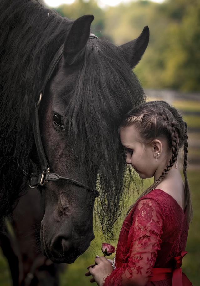 Friesian horse and girl portrait