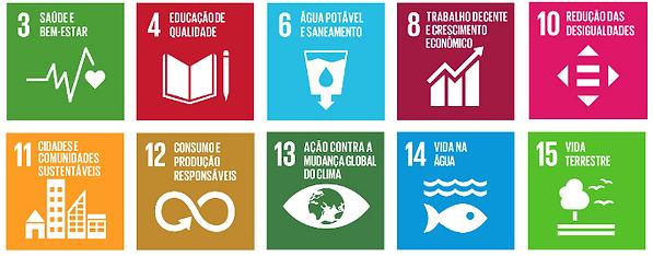 Objetivos de Desenvolvimento Social - ONU