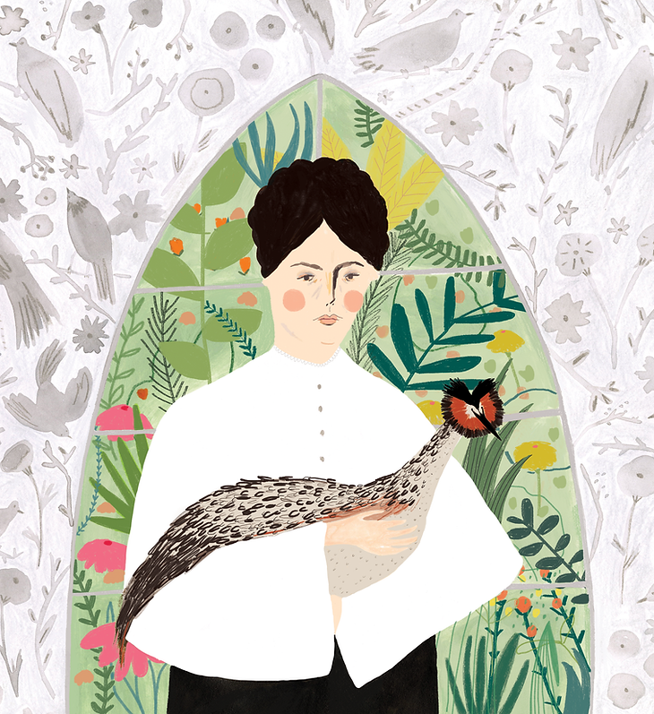 Emily Williamson RSPB Illustration First in the fight women in print