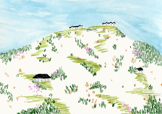 Sarah Wilson Sarsh Wilson Cowboy gif Ffd Cownoy The skinny magazine Swillistrations website Gif illustration Buy swillistrations Swillistrations store Swillistrations Manchester Nottingham  Instagram swillistrations Cornwall reportage drawing Trebarwith strand, bude, port isaac