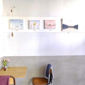 Bird exhibition photo