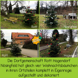 Schon gewusst Weihnachtsbäume 4.jpg