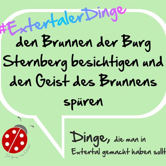 Brunnen Burg Sternberg.jpg