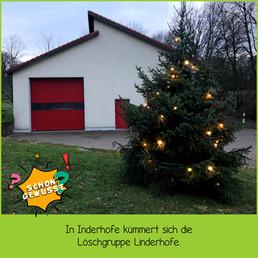 Schon gewusst Weihnachtsbäume 10.jpg