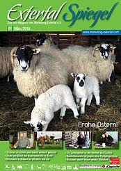 Extertal Spiegel 01-2018 Titelseite.jpg
