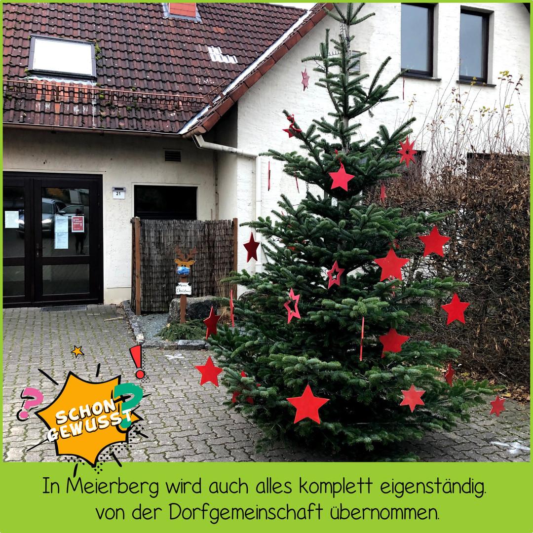 Schon gewusst Weihnachtsbäume 3.jpg