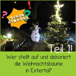 Schon gewusst Weihnachtsbäume 1.jpg