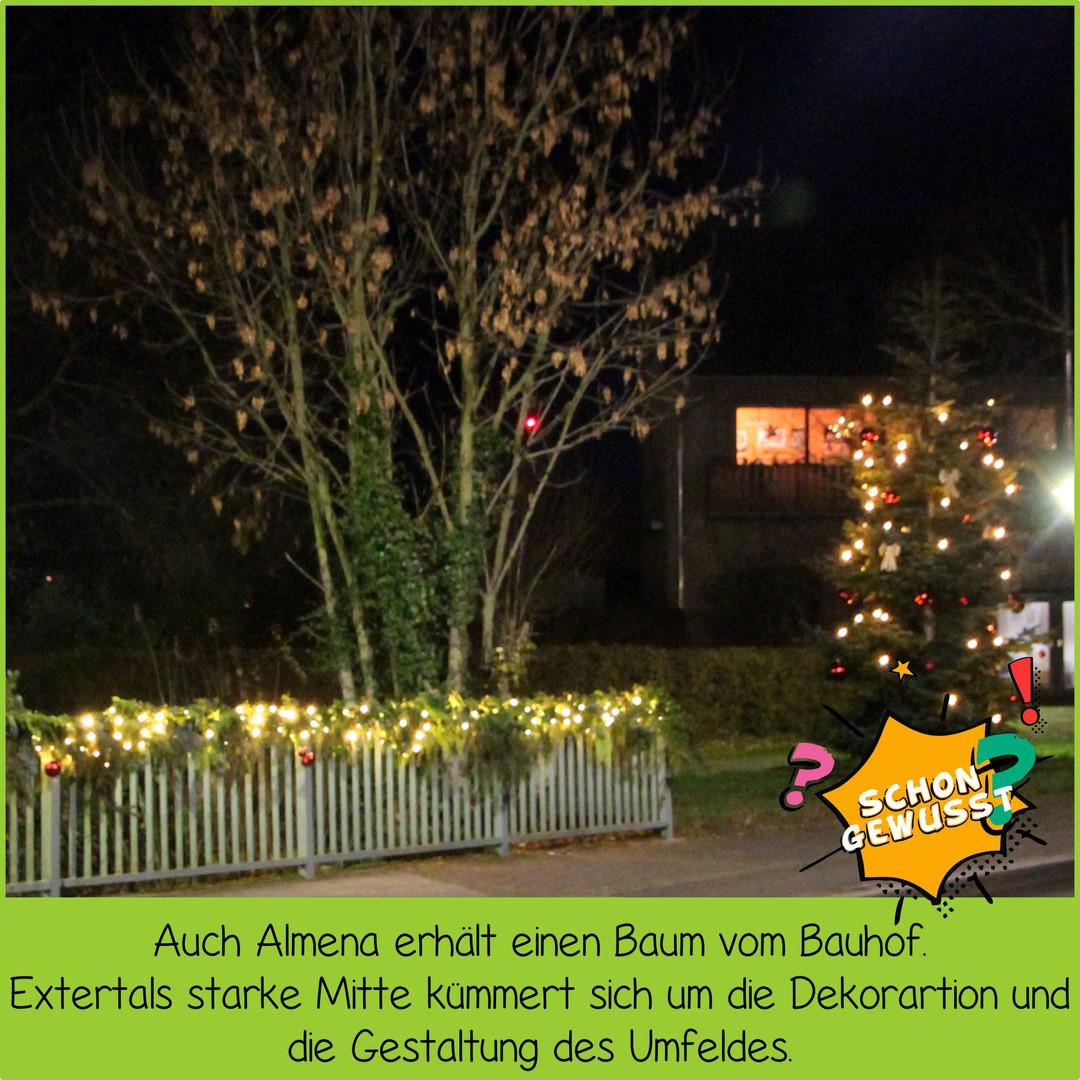 Schon gewusst Weihnachtsbäume 9.jpg