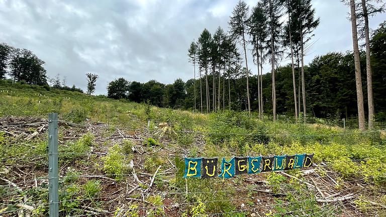 Einweihung Bürgerwald
