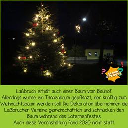 Schon gewusst Weihnachtsbäume 7.jpg