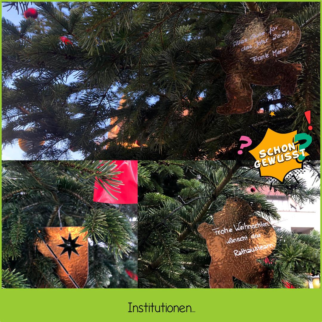 Schon gewusst Weihnachtsbaum Bösingfeld