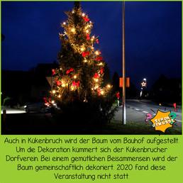 Schon gewusst Weihnachtsbäume 6.jpg