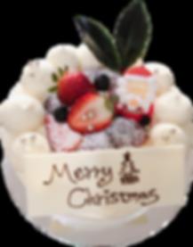 Christmas Scake.png