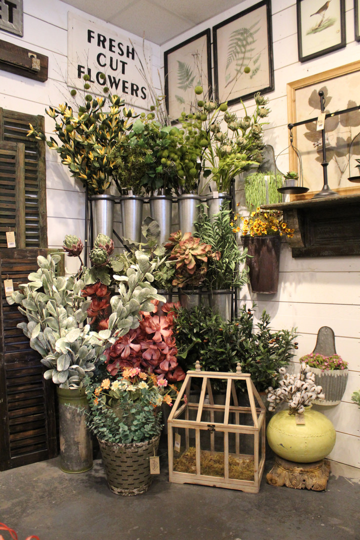 Greenery center in shop.